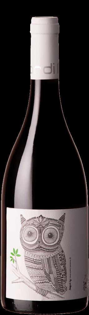 Jordi Miró Carignan Flasche