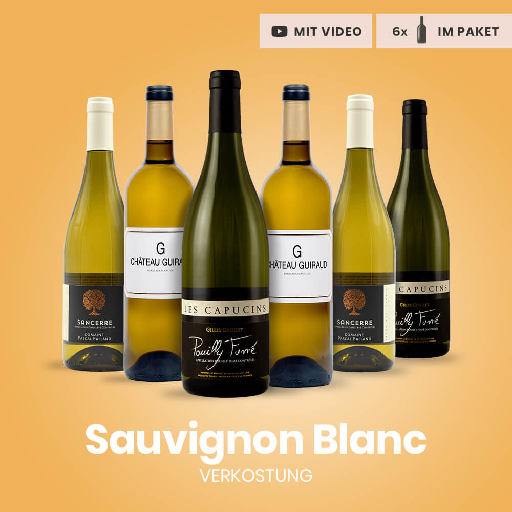 Verkostungspaket Sauvignon Blanc