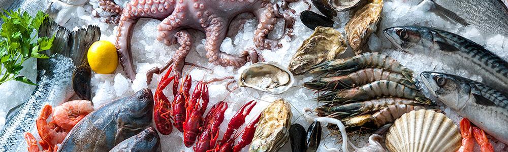 Meeresfrüchte und Fisch online kaufen