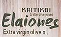 Kritikoi