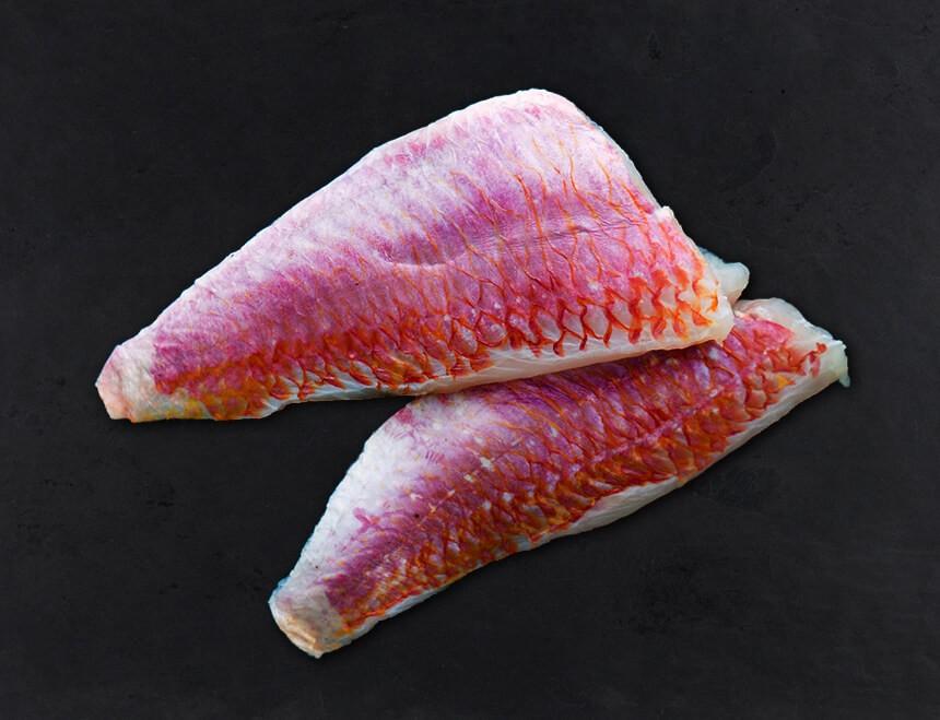 Rote Meerbarbenfilets Frisch