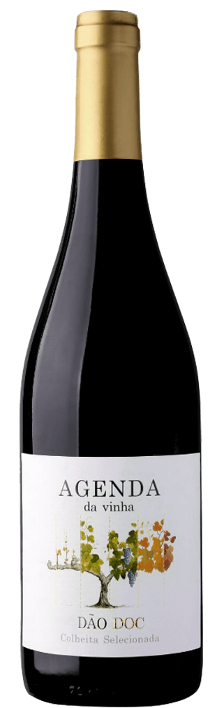 Agenda da Vinha Tinto Flasche